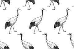 Japanska kranar för fåglar seamless modell svart white royaltyfri illustrationer