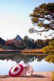 Japanska paraplyer i trädgården Arkivfoton