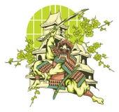 Japanska samurajer Arkivbilder