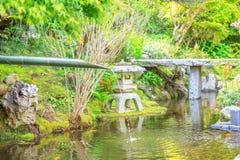 Japanska springbrunn- och bambuslevar arkivbilder