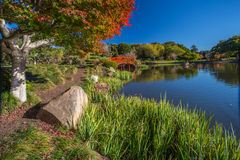 Japanska trädgårdar i höst Arkivbild