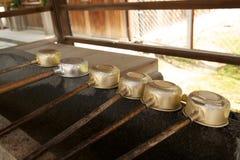 Japanska vattenslevar Fotografering för Bildbyråer