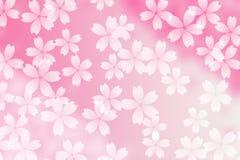 Japanskt abstrakt begrepp för körsbärsröd blomning på oskarp rosa bakgrund