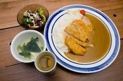 Japanskt currygriskött med ris Arkivbilder