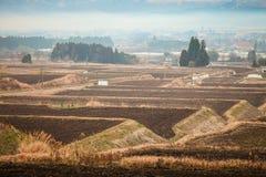 Japanskt lantgårdfält i en dimmig dag Arkivfoton