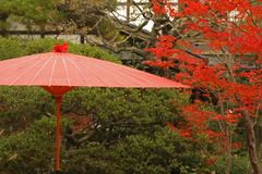 japanskt rött paraply royaltyfri bild