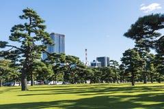 Japanskt svart sörjer och moderna byggnader Tokyo Arkivfoto