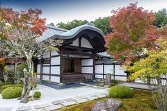 Japanskt träd för röd lönn under höst i trädgård på den Enkoji templet i Kyoto, Japan Arkivbild