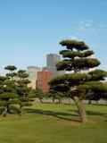 Japanträdgård. Arkivbilder