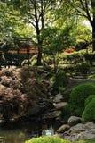 Japanträdgård Arkivfoto