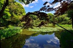 Japanträdgård av den Heian relikskrin, Kyoto Japan arkivbild