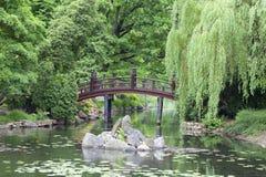 Japanträdgård, exotiska växter, vår, Wroclaw, Polen Royaltyfri Bild