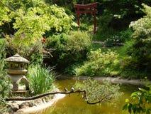 Japanträdgård i botaniska trädgården, Cluj Napoca Arkivbilder