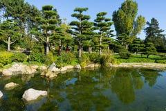 Japanträdgård i Dusseldorf i sommar royaltyfri fotografi