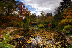 Japanträdgård i höst Royaltyfri Bild