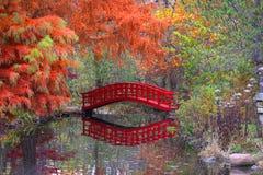 Japanträdgård i hösttid Fotografering för Bildbyråer