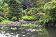 Japanträdgård i sommar, exotiska växter, Wroclaw, Polen Arkivbild
