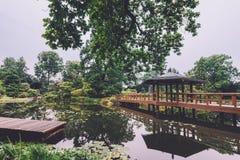 Japanträdgård i Wroclaw, Polen royaltyfri bild