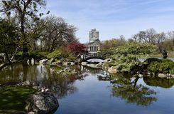 Japanträdgård på Jackson Park royaltyfria foton