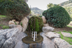 Japanträdgård på kibbutzer Hephzibah Royaltyfri Foto