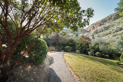 Japanträdgård på kibbutzer Hephzibah Arkivbild