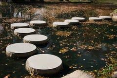 Japanträdgård som kliver stenar Arkivbilder