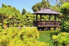 Japenese garden in San Francisco. A beauty scene of a garden in San Francisco Stock Photos