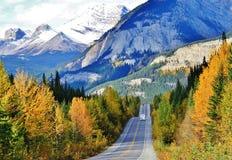 Japer, Alberta Stockfoto