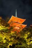 Japnese寺庙Kiyomizu在晚上,京都 库存照片