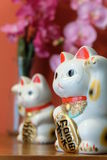 Japnese Lucky Cat Royaltyfria Foton