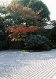Japoński plenerowy ogrodowy droga przemian z zielonymi krzakami i kamiennym posadzkowym tłem obrazy stock