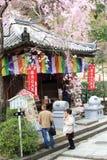 Japończycy są modlący się antyczną świątynię i odwiedzający, 'Hasedera' w wiosna sezonie zdjęcie stock