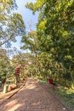 Japończyk uprawia ogródek przy Ribeirão Preto miasta zoo Fabio Barreto Sao fotografia stock