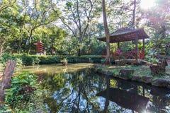 Japończyk uprawia ogródek przy Ribeirão Preto miasta zoo Fabio Barreto Sao zdjęcia stock