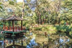 Japończyk uprawia ogródek przy Ribeirão Preto miasta zoo Fabio Barreto Sao zdjęcie stock