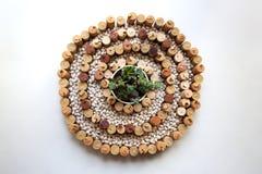 Japończyka kamienia ogródu pojęcie z wino korkami, białymi cynaderki fasolami i sukulentami, obrazy royalty free