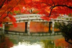 Japończyka ogród Obrazy Stock