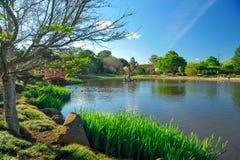 Japończyka ogród przy Toowoomba zdjęcie royalty free