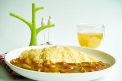 Japońscy curry'ego omletu ryż z kurczakiem i warzywami Fotografia Stock