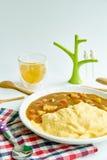 Japońscy curry'ego omletu ryż z kurczakiem i warzywem Zdjęcia Royalty Free