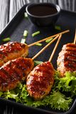 Japońscy kurczaków klopsiki które skewered i typowo piec na grillu nad węglem drzewnym słuzyć w yakitori restauracji zbliżeniu pi obraz stock