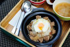 Japońscy ryż i jajko onsen Fotografia Royalty Free