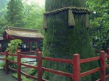 Japońska świątynia Zdjęcie Stock