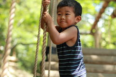 Japońska chłopiec bawić się z balansowanie na linie Fotografia Stock
