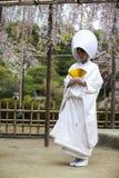 Japońska tradycyjna ślubna suknia Obraz Royalty Free