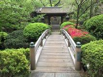 Japoński świątyni i odprowadzenia most w Tokio, Japonia Zdjęcia Stock