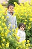 Japoński brat i siostra w żółtej śródpolnej musztardzie obraz stock