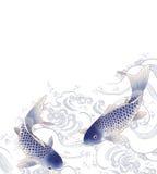 Japoński karp Fotografia Royalty Free
