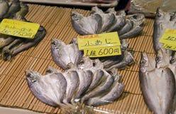 Japoński Koński Mackeral Zdjęcie Stock