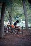 Japoński mężczyzna jest usytuowanym dla relaksować w parku Fotografia Royalty Free